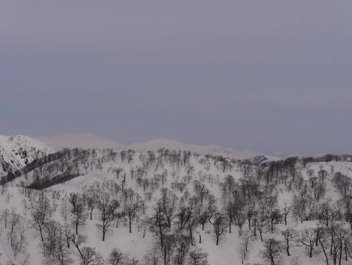 三ノ峰など石徹白の山も見えて