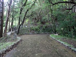 左に峠への入り口