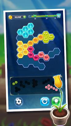 ブロックヘキサパズル:マイフラワーのおすすめ画像3