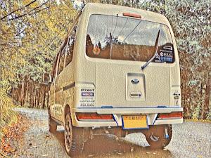 ハイゼットカーゴ  クルーズ ビジネスパック 5MT 4WDのカスタム事例画像 とねっとさんの2020年09月11日18:21の投稿