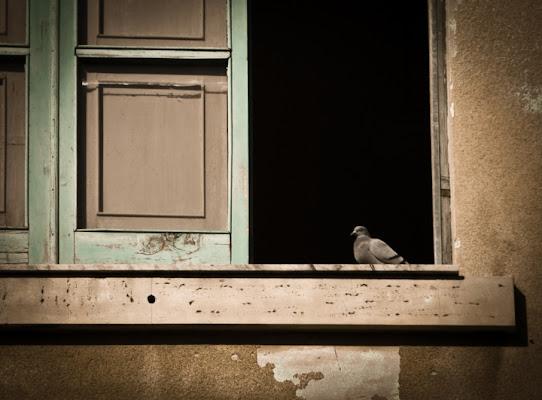 Affacciati alla finestra.. di Loredana Pagana