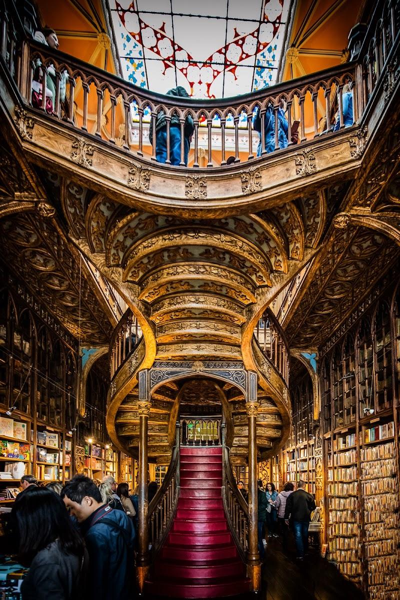 """Libreria Lello   """"Oporto"""" di Fiore Doncovio"""