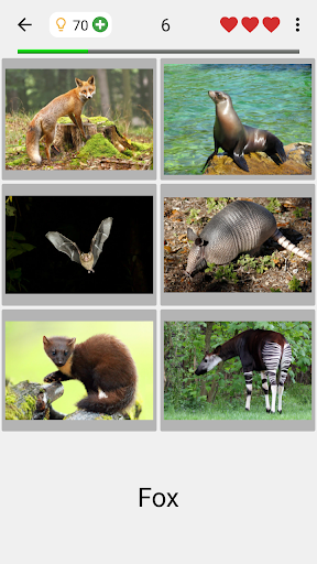 Animals Quiz - Learn All Mammals, Birds and more! 3.0.0 12