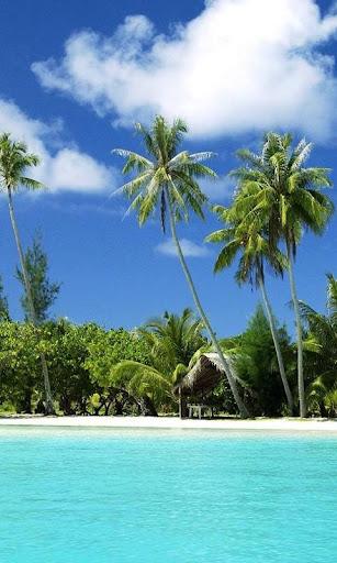 斐济海壁纸