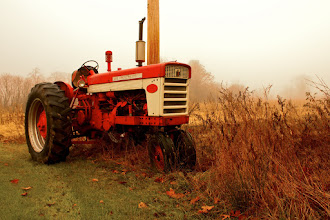 Photo: Finally, in all the years of shooting tractors I've finally got a shot worth sharing. Not perfect, but the morning sun burning away the fog really accentuated the red.  #365Project