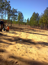 """Photo: """"WWII firing range"""" shows the documentation of a recently recorded site on the Apalachicola NF that was a rifle range associated with Dale Mabry Field during WW II and was still in use into the 1950s by the National Guard."""