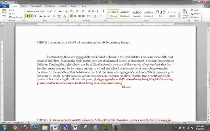I Am A Good Malaysian Essay