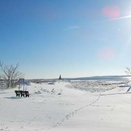 Snowscape by Kristine Nicholas - Novices Only Landscapes ( ray, icy, bench, buoy, waterscape, ocean, beach, landscape, sun, cold, tree, ice, snow, bush, water, sea, snowy, seascape, rays, sign, winter, benches, triangle, bushes, reservation, trees, brush, waterway,  )