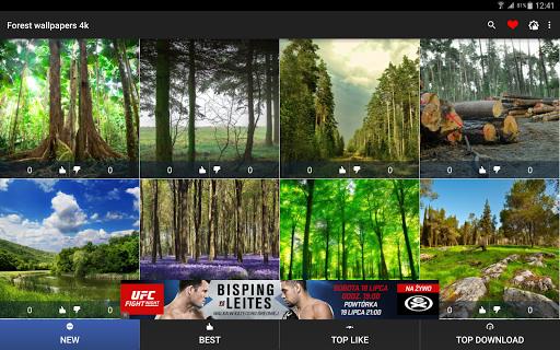 玩個人化App|森林壁紙4K免費|APP試玩