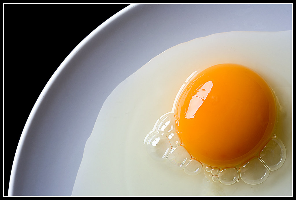 Egg on a Plate | RAW Egg on white plate Published in Digifot… | Flickr