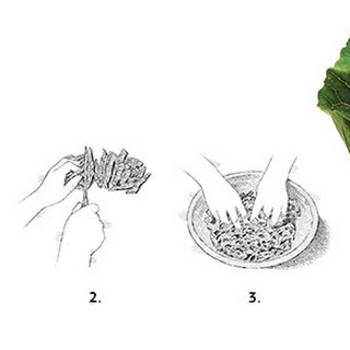 Robert Newton'S Shaved Collard Greens with Coconut and Shallot-Lime Vinaigrette Recipe