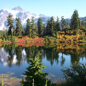 mt. shuksan and reflection lake by Darrin McNett - Landscapes Waterscapes ( washington, reflection, mountain, mt. shuksan, lake, reflection lake,  )