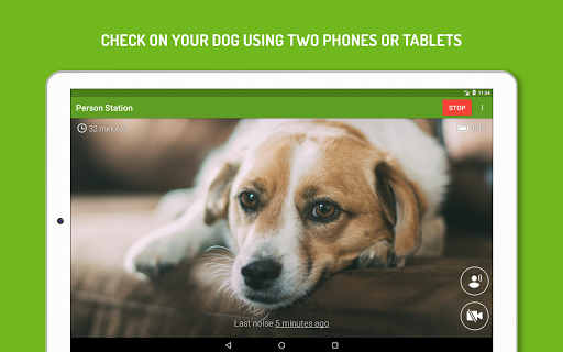 Screenshot for Dog Monitor: Puppy video cam in United States Play Store