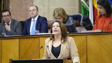 Carmen Crespo en la sesión de investidura.