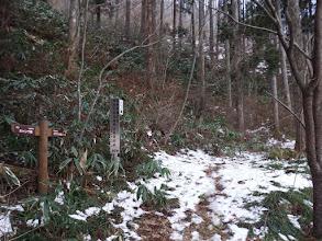 カラマツの森コース入口