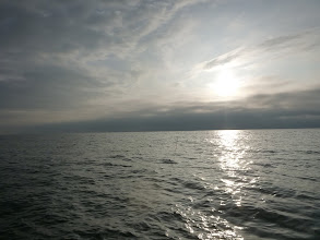 Photo: 日が昇ってきましたが、まだまだ喰ってます!