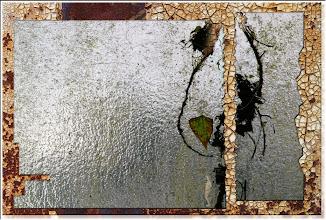 Photo: 2004 06 27 - R 04 05 15 740 w - D 045 - Glashausgarage 2
