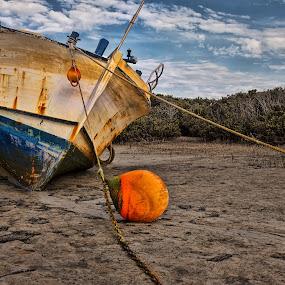 Abandoned Ship by Ewan Arnolda - Landscapes Beaches ( nature, wetlands, ship, landscape, coastal )