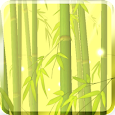 Bamboo Forest Live Wallpaper Icon