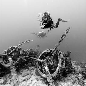 Wreckdiving by Rico Besserdich - Sports & Fitness Watersports ( diver, savoia-marchetti, kas, underwater, airplane, scuba, turkey, rico besserdich, sparviero, diving )