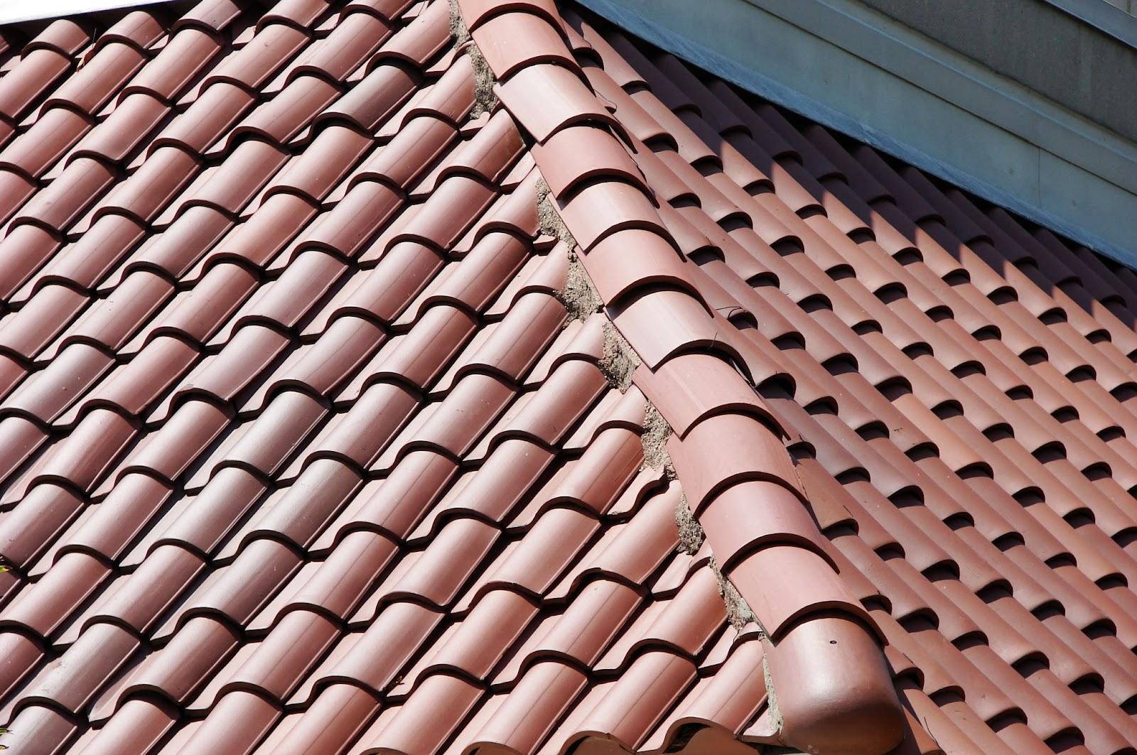 roofers in dublin