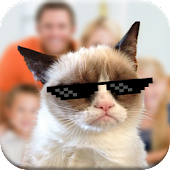 Cat Photobomb Photo Maker