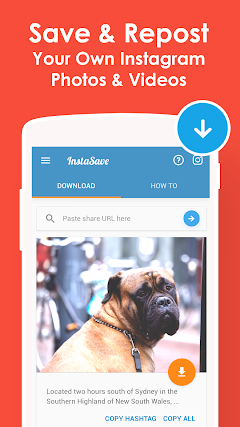 Page 3 : Best android apps for instagram downloader