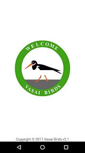 Vasai Birds - náhled