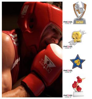 équipement marquage pour club de box, trophée, médaille, coupe boxe