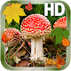 Leaves Mushroom HD LWP v1.1