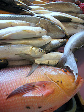 Photo: Milkfish and bream at the market