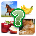Animal and Fruit Quiz 2020 icon
