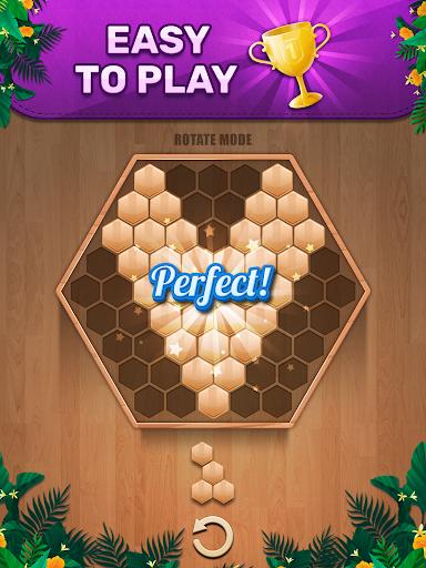 Wooden 100 Block Puzzle: Wood Hexa Star Gem apktram screenshots 12