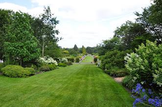 Photo: Mixed border RHS gardens Wisley
