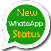 New WhatsApp Status