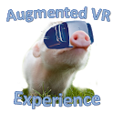 Augmented VR Experience Demo icon