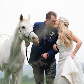 Horse by Lood Goosen (LWG Photo) - Wedding Bride & Groom ( bride, wedding dress, wedding photography packages, groom, wedding photographer, wedding photography, bride groom, weddings, wedding day, wedding photographers, lwg photo, lood goosen, wedding photographers pretoria, bride and groom, best wedding photographers, wedding photographer gauteng, wedding )
