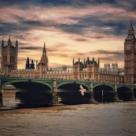 Evening in London by Gene Brumer - Buildings & Architecture Bridges & Suspended Structures ( london, bridge )