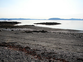 Photo: The beach at Point Higgins looking across Clarence Strait.