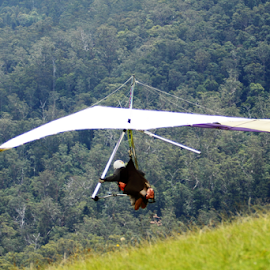 hand gliding by Neil H - Sports & Fitness Other Sports ( gliding, taking off, spectator sport, pilot, wingspan, hang gliding, aircraft, extreme sports, take off, aero, single, grass, background, wings, hand gliding, flying, helmet, light aircraft, single pilot, on the ground, extreme, budget,  )