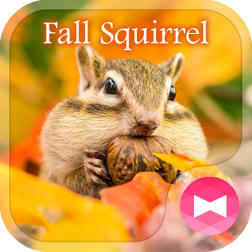 Cute Wallpaper Fall Squirrel Theme Icon