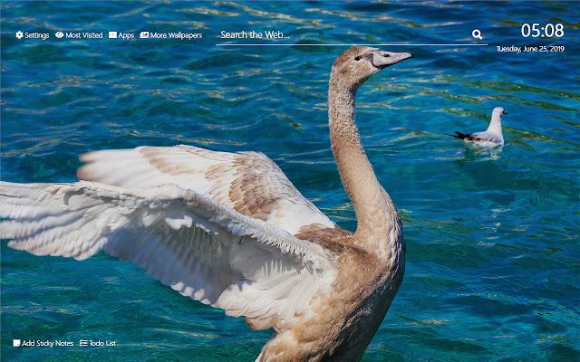 Goose Wallpaper HD New Tab Theme