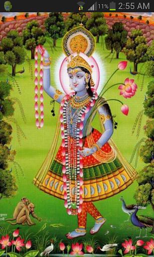 Shri Yamunashtak Pro