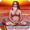 Complete Teachings of Swami Sharnanand Ji (Hindi) icon