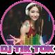 Top Lagu DJ TIK TOK (app)