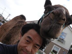 Photo: 2006年10月15日 ラクダといっしょ!  千葉の住宅展示場でのイベント 「コペチ」君(2歳)との2ショット