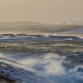 Golta by Espen Rune Grimseid - Nature Up Close Water ( waves, storm, waterscape, nature, norway, north sea, hurricane, golten, golta, canon )