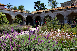 Photo: (Year 3) Day 31 - The Beautiful San Juan Capistrano Mission-011