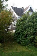 Photo: Høst i hager