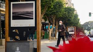 Una de las imágenes que pueden verse en el Paseo de Almería.